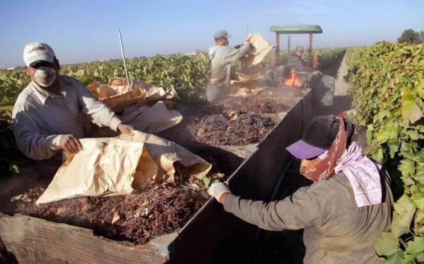 Immigration Farmworker Exodus_2