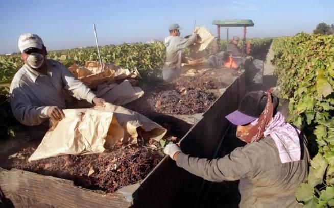 immigration-farmworker-exodus_2