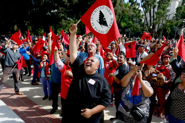 la-fabric-fierross-of-salinas-along-with-other-united-farm-workers-union-members-cheer-20160830