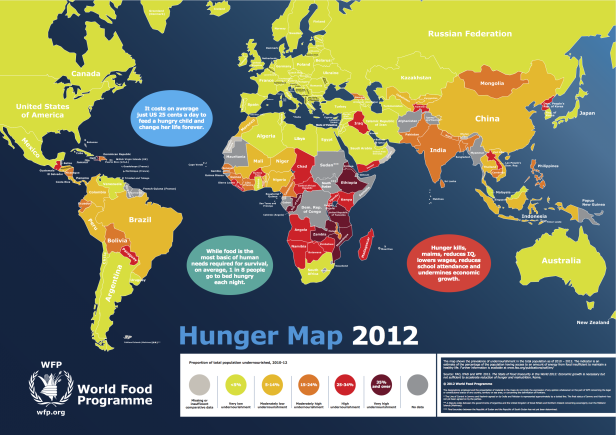 explainingprogress_world-hunger-map-2012-prevalence-of-undernourishment-in-the-total-population-as-of-2010-2012-–-world-food-programme0.png