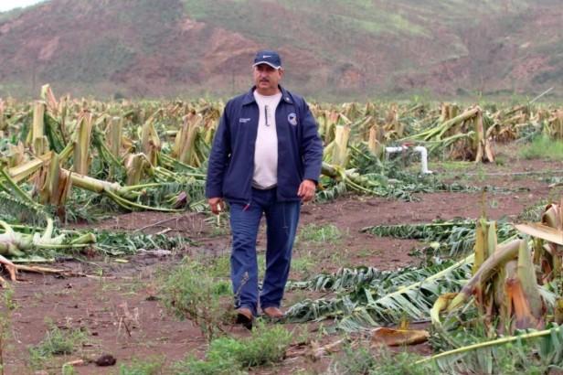 10-16-17 PR Agriculture Updates MF (2)