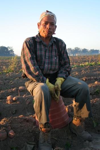 Man resting on a bucket in a potato field