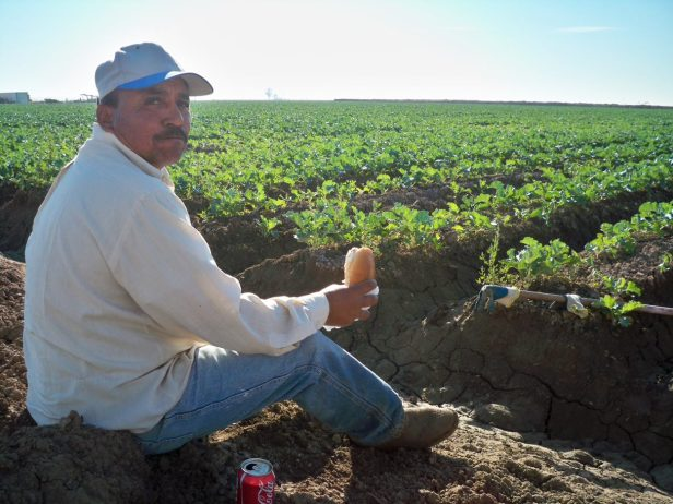 Man has his lunch in a field in Arizona