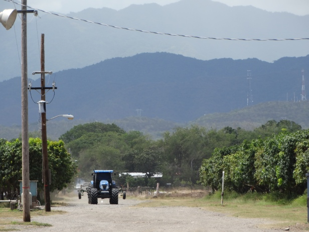 A large blue tractor is coming down the road towards the camera. It is dwarfed by two rows of huge blue mountains in the background. The road is flanked by trees and telephone poles.