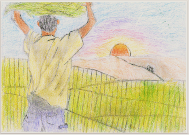A young man stands with his arms raised above his head, supporting a load of harvested tobacco leaves. He faces striated green fields and a horizon that glows orange at sunset.