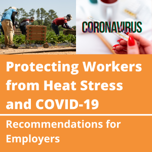 Protecting-Workers-from-Heat-Stress-and-COVID-19-icon