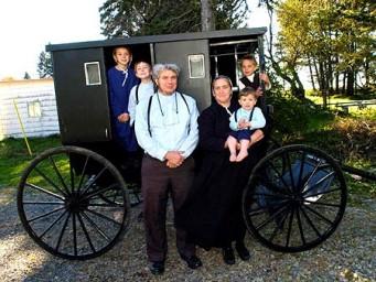 (New Order) Amish