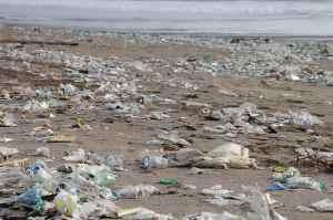 garbage-environment-beach-pollution-waste-waste-disposal-plastic-plastic-waste